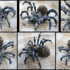 Twilit Arachnid Armogohma av Linda Lundqvist